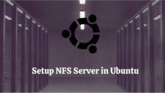 Setup Nfs Server Ubuntu